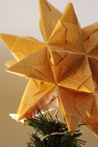 Christmas Tree Star fot.pronoya